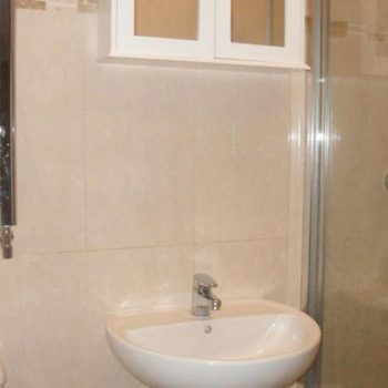 Lions Roar bathroom with shower